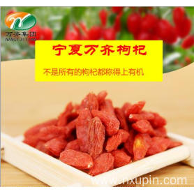 Real disposable red goji berry excellent level