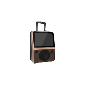 New Style Portable LCD Trolley Speaker