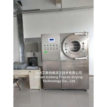 Small Freeze Drying factory