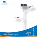 DELIGHT Double Arm Decorative Solar Stake Lights
