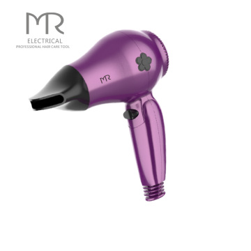 Ultra Rechargeable Ceramic Ionic Portable Blow Dryer