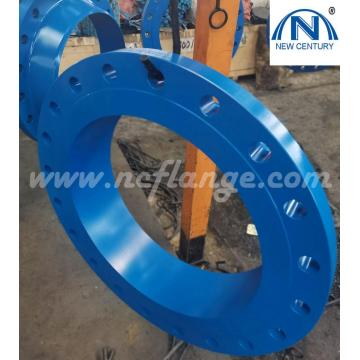 B16.5 300lb Blue Paiting Welding Neck Flanges
