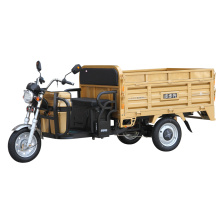 lead acid or lithium battery electric trike