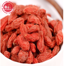 Anti-Aging Superfood  Protect Eyesight  goji berries