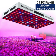 Creebeedka Wareyska ee EU / US COB LED Grow Light