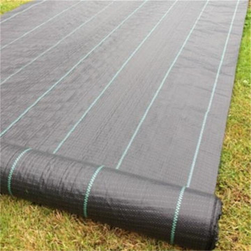 Agricultural Greenhouse Black PP Woven Weed Mat