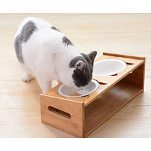 Pet Bowl With Feeding Platform