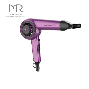 Ionic Electric Hair Dryers, DC Motor Professional Hair Dryer