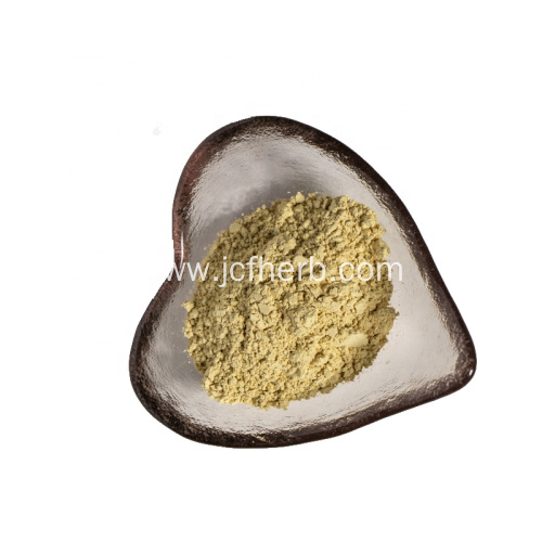Apium Graveolens Extract Apigenin Powder