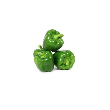 Fresh green color capsicums bell pepper