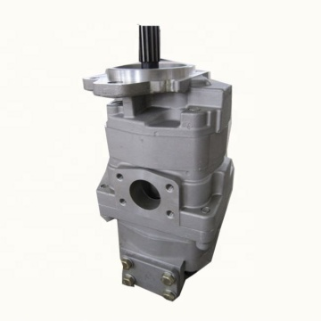 LW100-1 hydraulic pump