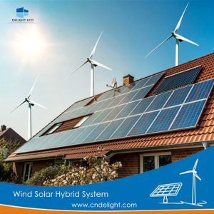 DELIGHT Wind Solar Hybrid Generator Replaceable Battery