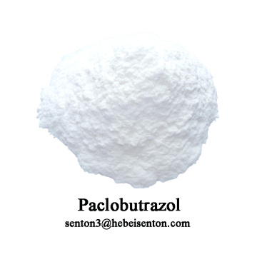 Plant Growth Regulator and Fungicide Paclobutrazol