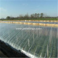 200 Micron Plant Growing Plastic Mushroom Greenhouse Film