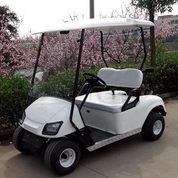 2 seat mini electric golf cart