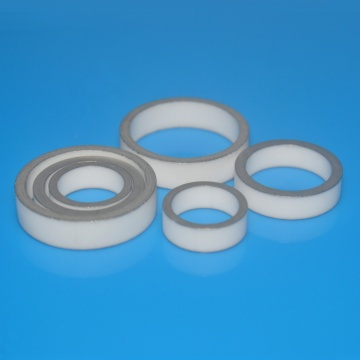 Nikel Disepuh Metaillized Alumina Ceramic O Ring