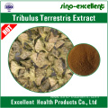 Tribulus terrestris extract with saponins