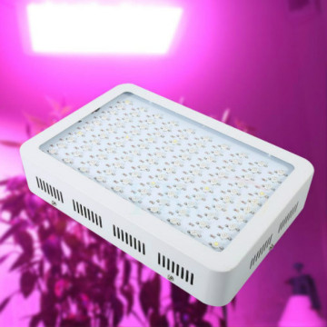 Лепшы High Power LED Grow агні High разы