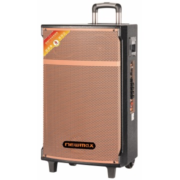 100W Professional Rechargeable Outdoor Trolley Speaker
