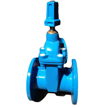 DN80 Ductile Iron Flanged Water gate valve