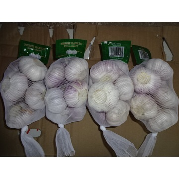 New Season 2020 Normal White Garlic