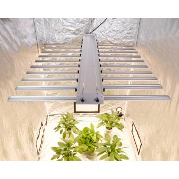 Led Hydroponics Faʻatautaia Lupe Samples Phlizon