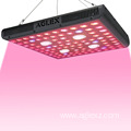 4*4ft Core Coverage LED COB Grow Light 2000w