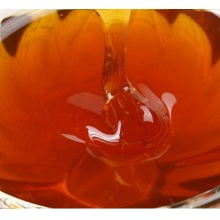 100% pure and natural fennel honey bulk sale