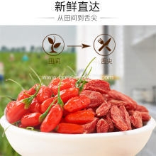 Organic  Nature Ningxia Goji Berry