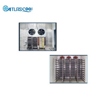 Industrial Blast Freezer Cold Storage Room