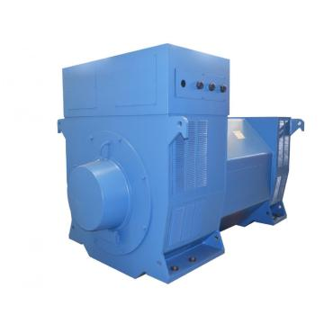 High Voltage Four Pole Diesel Generator