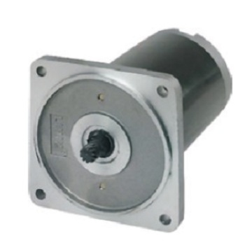DC Induction Motor 55ZY Series