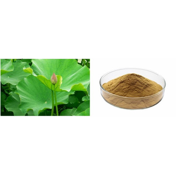 Loss weight blue lotus flower extract