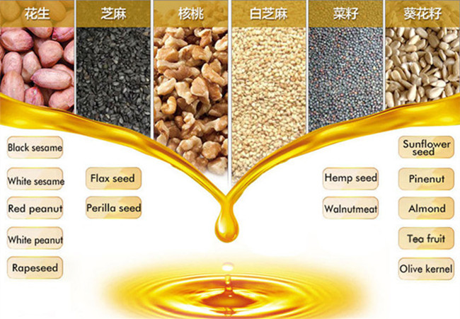 seeds oil extraction machine for home use