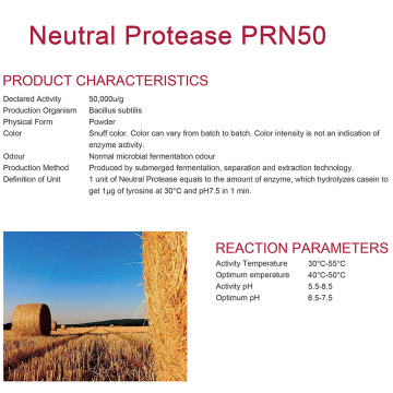 Neutral Protease for alcohol fermentation