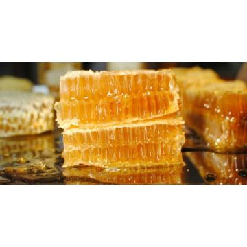 Natural Comb Honey Products From Honey Comb