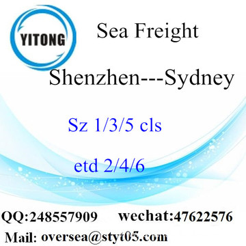 Shenzhen Port LCL Consolidation To Sydney