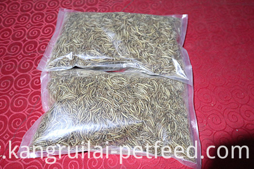 Vital High Protein Tube Feed