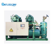 Bitzer Compressor Blast Freezer Machine for seafood