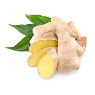 Chinese Selected Fresh  Yellow Ginger