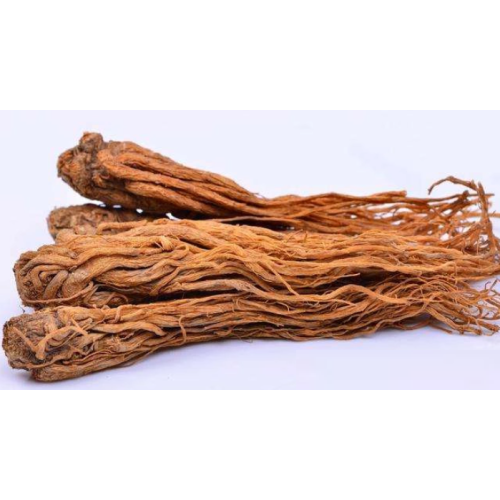 Angelica root essential for skin health