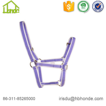 Purple Webbing Customized Size Horse Halter