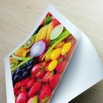 Top Quality A4 300gsm Waterproof Printing Roll High Glossy Paper Cast Coated Inkjet Photo Paper