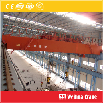 Double Trolley EOT Crane