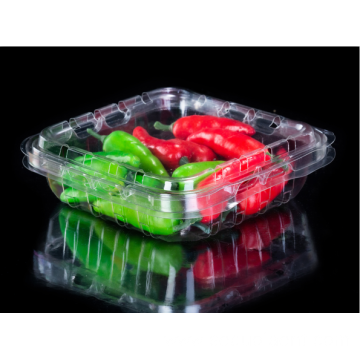 Clamshell Vegetable Packaging Box