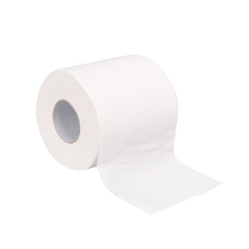 Poundland eco friendly toilet paper roll