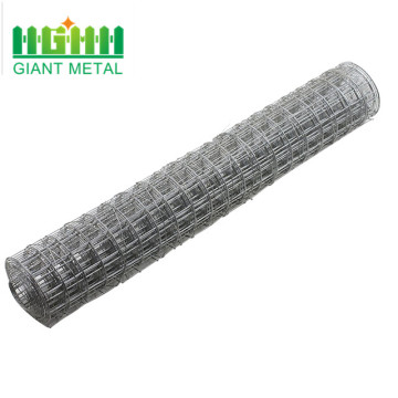 electro cage galvanized welded wire mesh