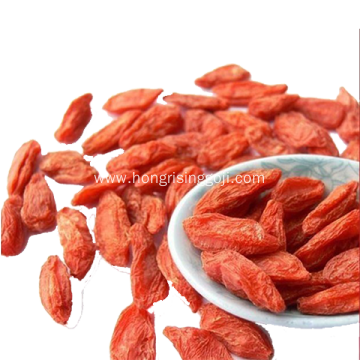 Free Sample supplied Low pesticide residues Goji Berry