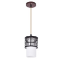 Creative pendant light Dinning RoomDecor hanging lamp