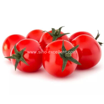 lycopene Cold water Soluble